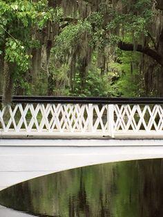 Photo lovers bridge