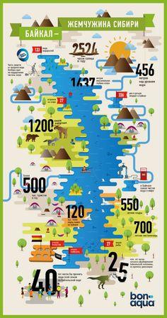 Познавательная инфографика - Инфографика