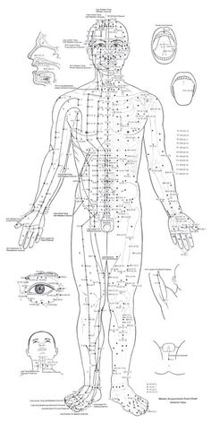 Accupressure Points (front)