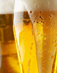 Guidelines for Keeping a Lager Fermentation on Track | E. C. Kraus Homebrewing Blog