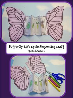 Butterfly Life Cycle! The Life Cycle of a Butterfly Sequencing Card Craft is a fun way to add a craft to your life cycle sequencing cards.