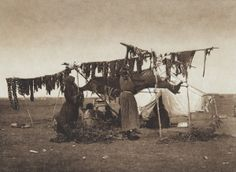 Drying Meat [Sioux]  (The North American Indian, v. III. Cambridge, MA: The University Press, 1908)