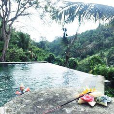 Morning rituals #bullersinbali #ubud #infinitypool #bejiubudresort