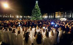 The Netherlands - 2017 - The Hague - Lange Voorhout  - Christmas tree and Santa Lucia celebration - Swedisch celebration