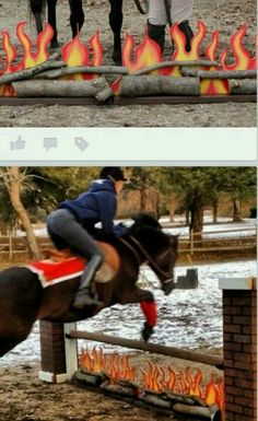 3' fire fillers (via Nicole P. English Tack Trader). OMG this is ridiculously awesome.