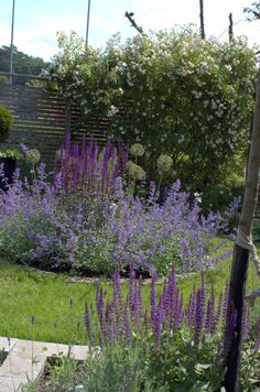 Trädgårdstoken på Facebook Facebook, Plants, Plant, Planting, Planets