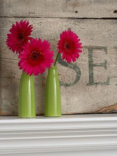 I have 3 green pots almost exactly the same green color as these vases and I've been trying to figure out what to plant in them, now I know - bright pink Gerbera Daisy's!  I may have to go buy these vases so I can have them both inside and out!