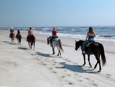 Guided horse rides at Amelia Island, where I 4 wheel to surf fish