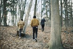 Lily, Remus and James on a walk in the Forbidden Forest -1975