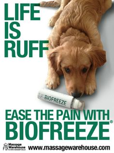 Biofreeze- I love biofreeze but it's hard to find In my area but walgreens has perform  gel which is made by the same people and to me is the exact same!
