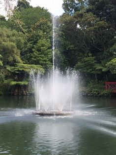 Pukekura Park, New Plymouth Kiwiana, Plymouth, Places Ive Been, Waterfall, Spaces, Park, Travel, Outdoor, Outdoors