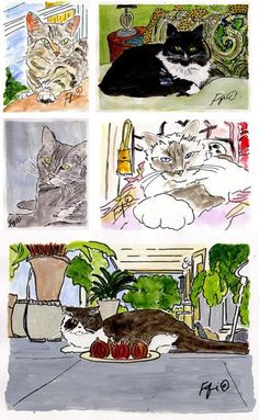 CUSTOM Pet Portrait Special by Fifi Flowers on Etsy, $50.00 SALE ENDS Sept 15, 2012
