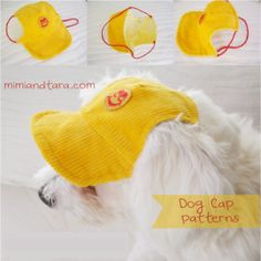 Free Dog Clothes Patterns: Dog cap pattern - maybe another to fit a toy giraffe? Dog Clothes Patterns, Sewing Patterns, Shirt Patterns, Dress Patterns, Costume Patterns, Sewing Ideas, Dog Pajamas, Dog Crafts, Dog Pattern