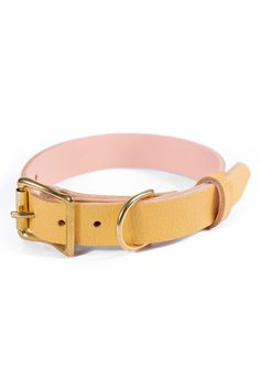As a pet moms and dad, you'll find yourself wishing to ruin your dog and provide them things which aren't necessarily in the standard requirements category. Luxury Dog Collars, Leather Dog Collars, Hyperactive Dog, Buy Pets, Pet Carriers, Outdoor Dog, Yellow Leather, Id Tag, Dog Paws