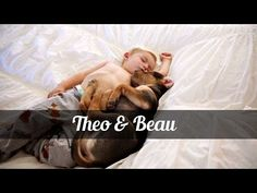 [VIRAL VIDEO] THIS IS THE STORY OF THEO AND BEAU, AND THE BEAUTY OF RESCUING YOUR BEST FRIEND - Page 2 of 2 - Just Mans Best Friend