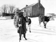 Books and a tv programme were made about this remarkable woman. Hannah Hauxwell on her farm. Thomas Tallis, Ghost Walk, Vintage Tractors, Documentary Photography, British History, Historical Photos, Documentaries, 1 August, January 2018