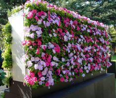 Jardim-Vertical-10-modelos-incríveis-para-inspirar-10.jpg (1492×1264)