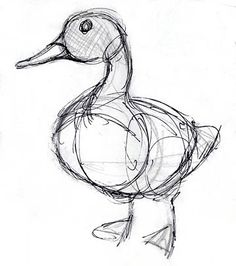 Concept Design Sketches - The Art of David Boudreau ★ Find more at www. Realistic Pencil Drawings, Pencil Art Drawings, Bird Drawings, Art Drawings Sketches, Animal Drawings, Drawing Birds, Drawing Animals, Inspiration Art, Art Inspo