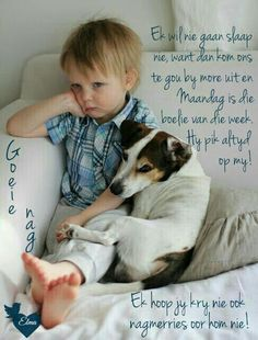 Jack Russell Terrier - A Dog in One Pack - Champion Dogs Dogs And Kids, Animals For Kids, I Love Dogs, Puppy Love, Baby Animals, Dogs And Puppies, Cute Animals, Doggies, Dogs 101