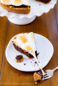 Gimme S'more! Over 50 MOUTHWATERING S'more Recipes! | Chef in Training