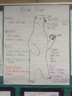 P is for polar bear Polar Bear Facts, Penguins And Polar Bears, Artic Animals, Animals For Kids, Wild Animals, Baby Animals, Glad Strategies, Bears Preschool, Animal Activities