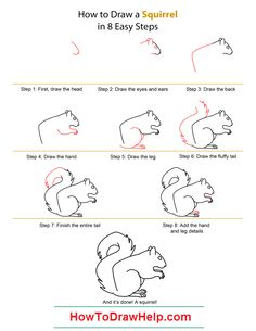How to Draw A Squirrel - Quick Step-by-Step Tutorial Drawing Tips, Painting & Drawing, Drawing Ideas, Sketch Ideas, Drawing Stuff, Drawing Tutorials, Figure Drawing, Rock Painting, Shopkins Drawings