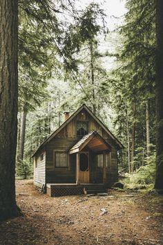 outdoorspastelnature:Love Nature