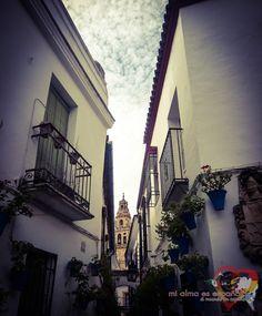Calleja de las Flores. Córdoba, Andalucía, España.