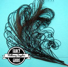 3 Curled Peacock Stems Sprigs Feathers Black by fancygoods