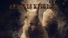 "Images For Print or T shirts Design-""Animals kingdom"" 