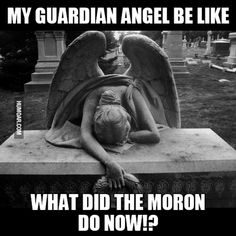 My guardian angel be like meme Really Funny Memes, Stupid Funny Memes, Funny Relatable Memes, Haha Funny, Quit Job Funny, Hilarious, Funny Christian Memes, Christian Humor, Catholic Memes