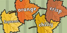 Preview: Autumn Words on Leaves