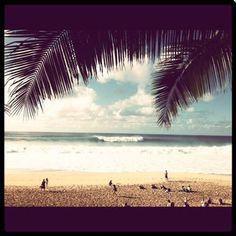 Escape to Hawaii... - Blog   Billabong Girls Australia