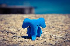 Suede elephant St Ives Cornwall