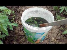 Maceratul de urzică (un ajutor în grădină ) - YouTube Make It Yourself, Nature, Youtube, Gardening, Plant, Naturaleza, Garten, Lawn And Garden, Nature Illustration