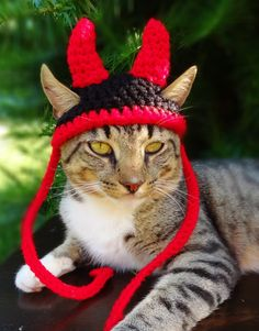 Cat Hat Costume - Small Dog Hat Costume - The Little Devil Hat for Cats and Small Dogs