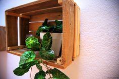 Proyecto de decoración con muebles reciclados de Las Tres Sillas para la empresa Coto Consulting en Valencia Valencia, Bathroom Medicine Cabinet, Wine Rack, Storage, Furniture, Home Decor, Recycled Furniture, Chairs, Blue Prints