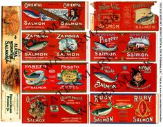Salmon Can Labels, Old Fishery, Vintage Cannery, Packing House, Seattle Washington, Alaska Fishing, Weathered, Antique Reproduction Set 332 by retrowallart on Etsy