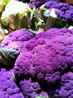 Purple Cauliflower...I've never seen or heard of purple cauliflower before. Not only is it pretty but I hear its delicious too