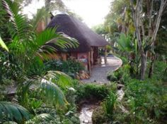 African Jungle, Maputo, North South, Nature Reserve, Hotels And Resorts, Adventure Travel, South Africa, Scenery, Bucket