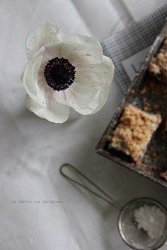 squares135 Strawberries crumb cake