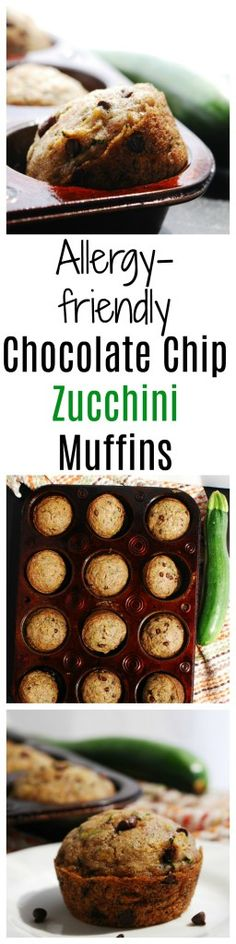 Allergy-friendly Chocolate Chip Zucchini Muffins Recipe by AllergyAwesomeness Dairy Free Zucchini Muffins, Zucchini Chocolate Chip Muffins, Zucchini Muffin Recipes, Dairy Free Eggs, Dairy Free Diet, Chocolate Chips, Egg Free Recipes, Allergy Free Recipes, Bread Recipes