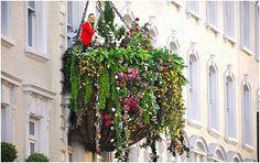 Hängender Garten vor Hotel Indigo in Paddington