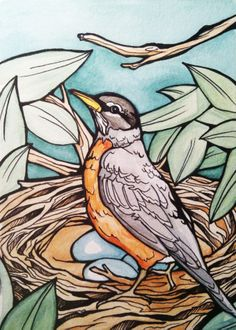 viii. watercolor, robin, nest, nature, eggs, bird, spring, kaia danielle illustrations.
