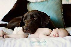 Cette tendresse animaux/bébé m'émerveillera toujours...
