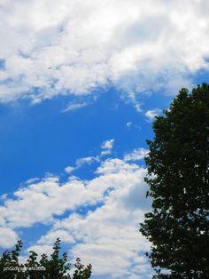 Nuvole, in una bella giornata di fine primavera riprese con Canon PowerShot N