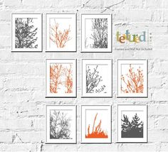 Nature Art Prints Modern Foliage Set Of 9 8X10 by TexturedINK, $54.00