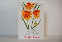 Blanket Flower (Gaillardia) – 4-color Letterpress Card, Blank, by LionOfBali, $5.95