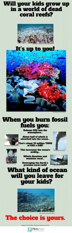 A quick look at one of the ways burning fossil fuels affects our oceans. Kids Growing Up, Travel Reviews, Oceans, Conservation, Infographics, Adventure Travel, Fossil, Traveling By Yourself, How To Plan