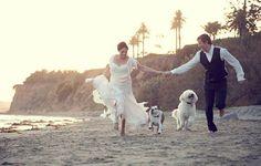 Chụp ảnh cưới với thú cưng  www.marry.vn  Cùng tạo ra ý tưởng độc đáo cho ngày cưới của bạn Ý tưởng cưới Ý tưởng cưới độc đáo Marry.vn